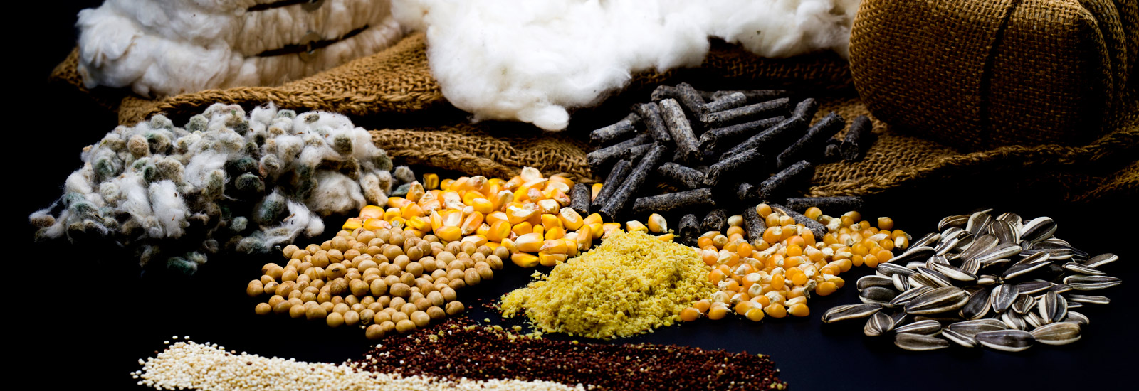 Algosur - Production and Industrialization of Agroindustrial Products